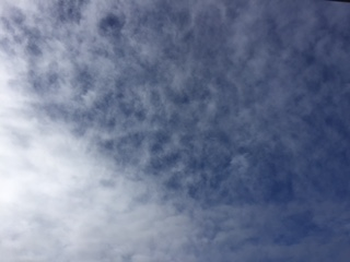 image1_1214.JPG