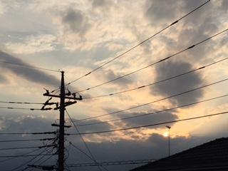 image1_898.JPG